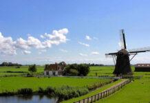 Zwroty podatku z zagranicy - jak wygląda rozliczenie podatku z Holandii